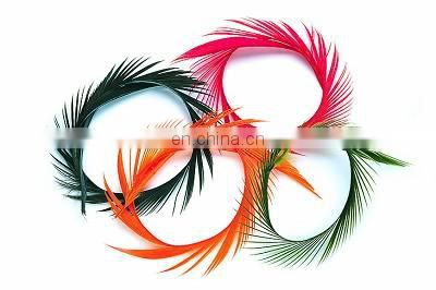 Wholesale 15-20cm goose biots white feathers