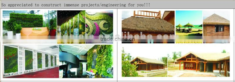 Artificial Succulent plant wall (special offer/bargain price:/2014 High Quality Factory price/outdoor & indoor )