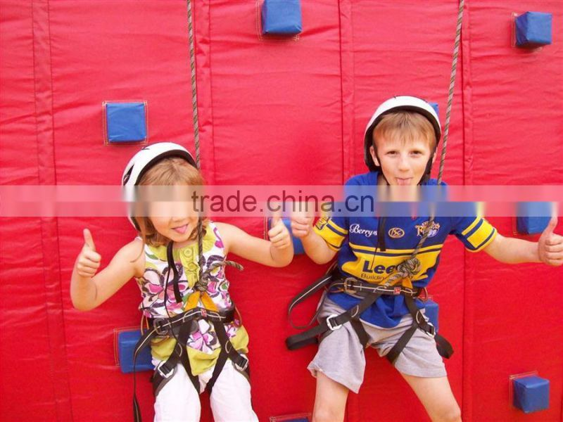 Factory Price inflatable climbing wall,children climbing wall,moveable climbing wall