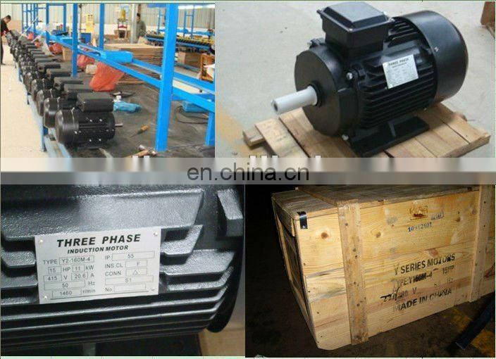 Y 13 hp electric motors 10kw