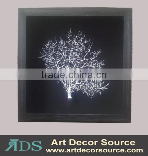 Marine Plants in Shadow Box Frame