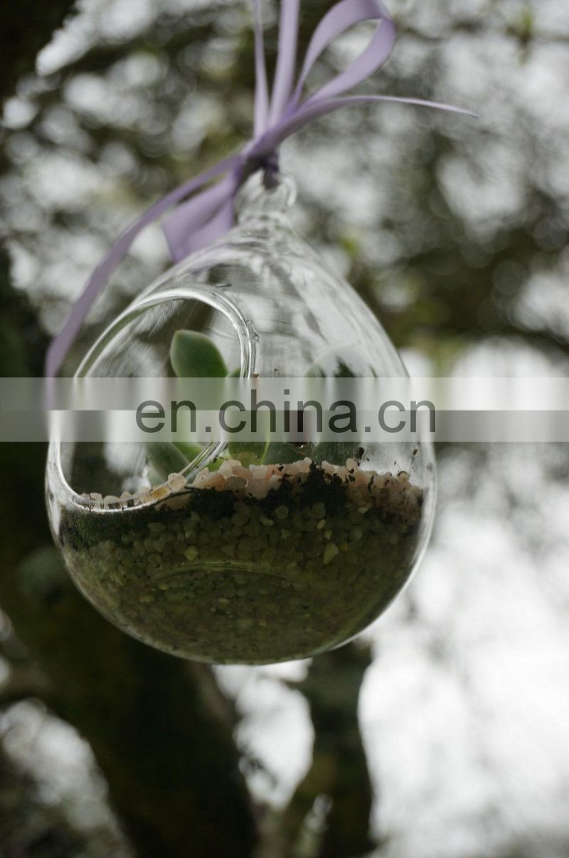 Teardrop Terrarium Hanging Glass Vase Pot