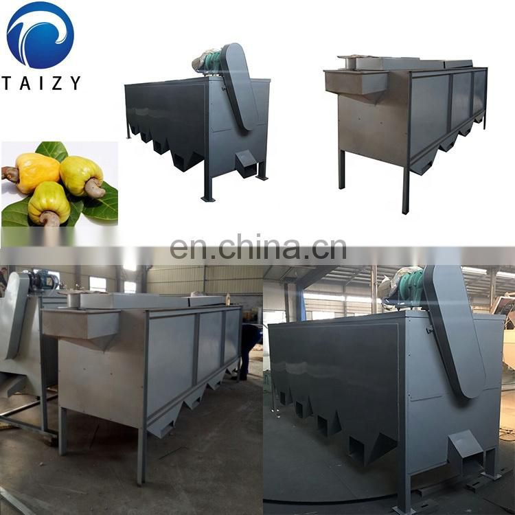 Taizy Good quality Cashew nuts factory processing line with best price