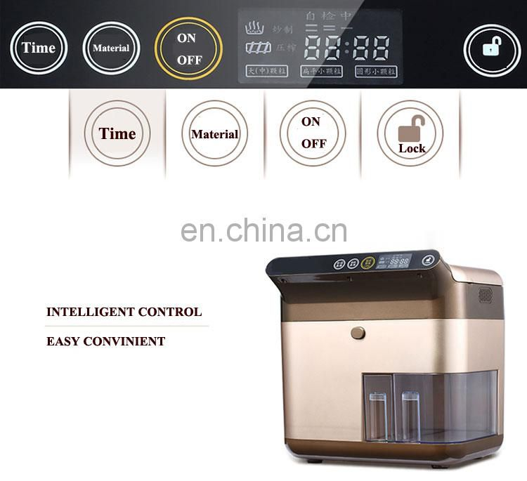 Automatic household stainless steel oil press small family cold and hot oil press CE certification