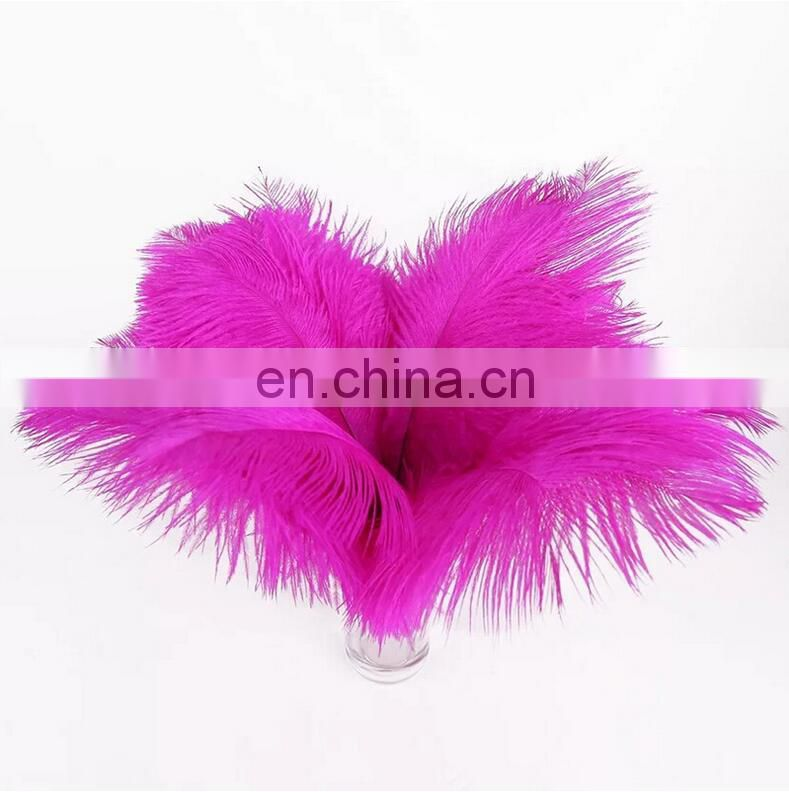 40-45cm Ostrich Feather White Red Blue Green Wedding