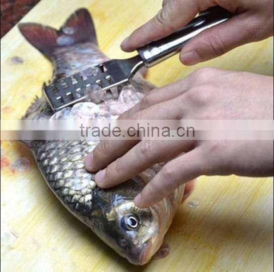 Stainless Steel Fish Scales Scraper / plane fish scales / Scraping Scales Fish