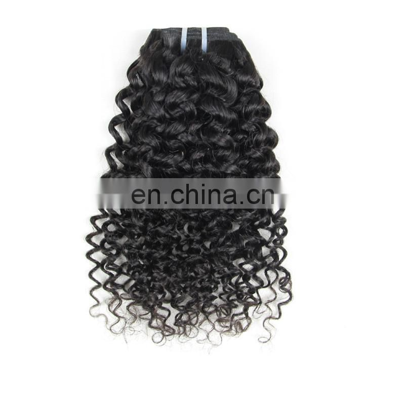 Wholesale quality curly brazilian hair
