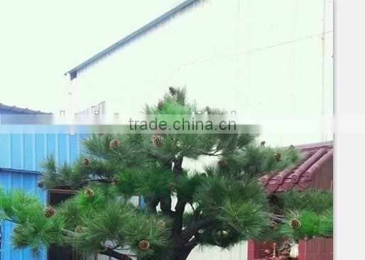 hot sale artificial tall pine trees