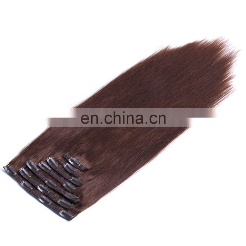 High Quality Factory Price Virgin Brazilian Remy Hair Clip In Hair Extension