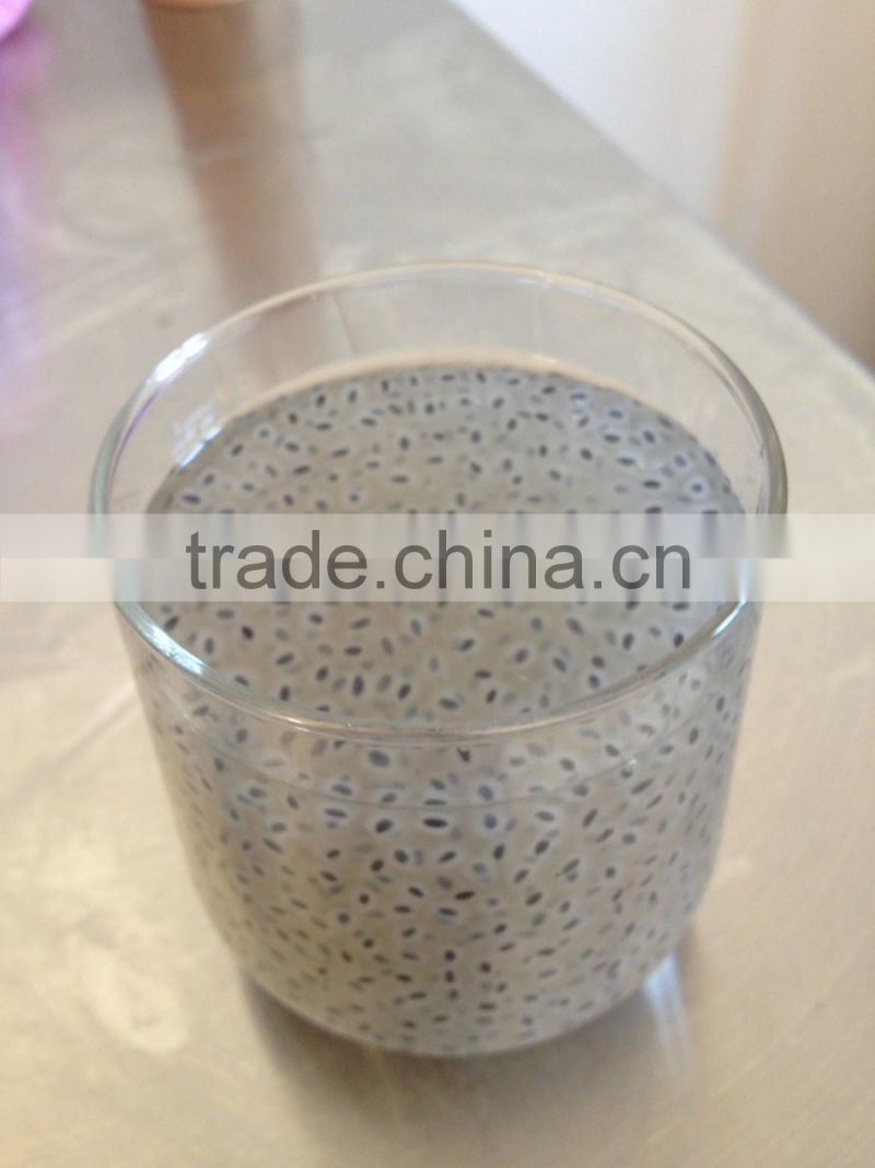 Basil Seeds for wholesales