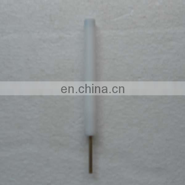 4mm Ag Silver electrode