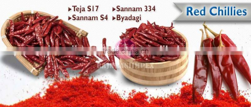 SANNAM/S4 Dry Red Chilli Latest Price