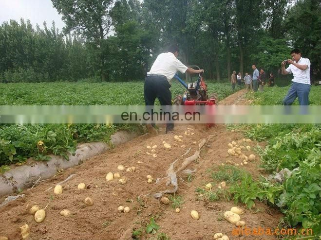 2017 hot sales Agriculture mini peanut harvester machine tractor mounted potato harvesting machine
