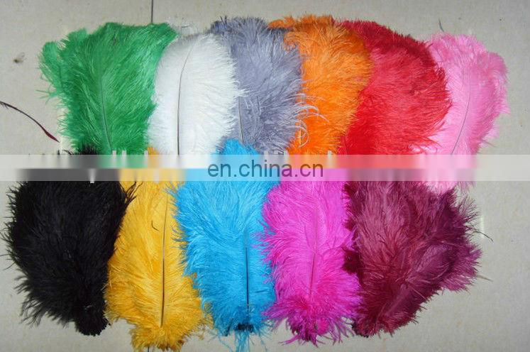 beautiful natural ostrich feather