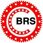 BRS Bearings(Luoyang)