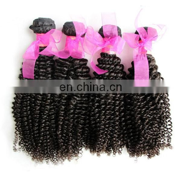 wholesale unprocessed 6a indian kinky curly virgin human hair extension 100% remy indian hair weaving