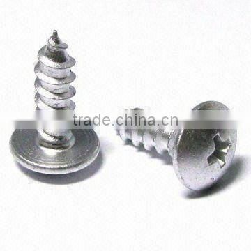 Made in Taiwan stainless steel 306 standard Tapping Screw self tapping screw