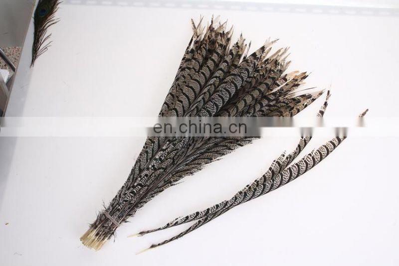 best quality 30-40cm pheasant feather
