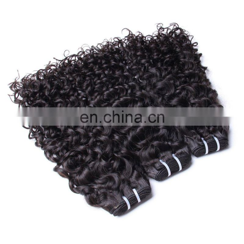 2016 Cheap natural factory price unprocessed malaysian curly hair wet and wavy