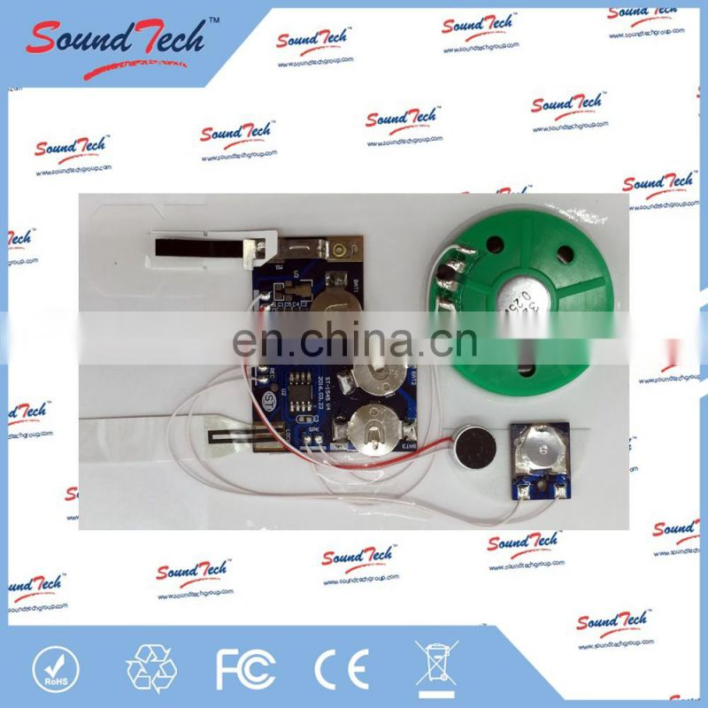 Acoustic Components recordable music card sound chip