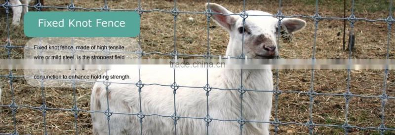 Hinge Joint Lowes Hog Wire Fencing/Fixed Knot Animal Fence/Square Deal Fencing V Mesh for Livestock