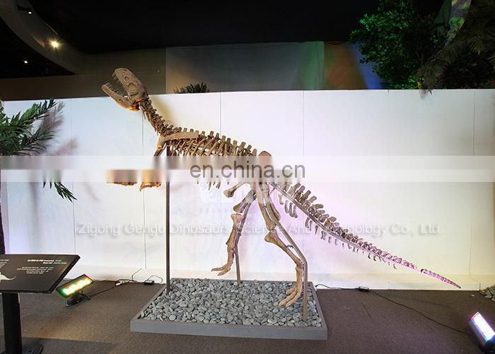 Outdoor science museum exhibits dinosaur fossils