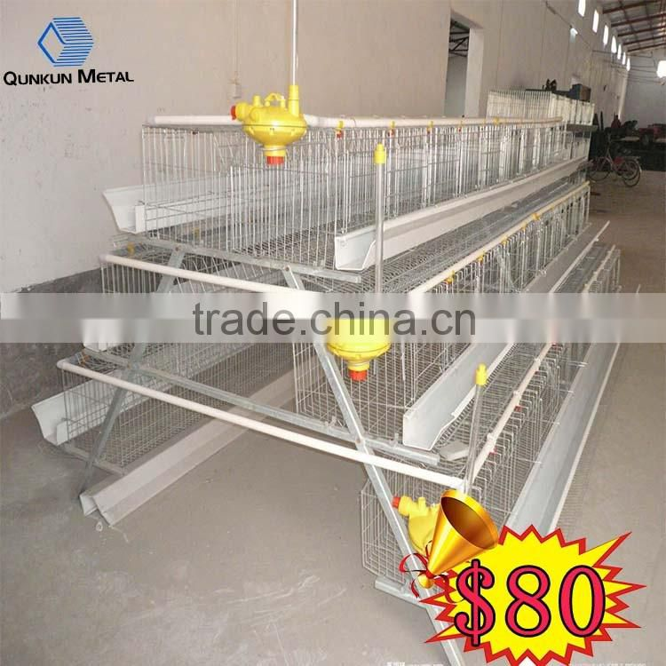 Egg Production Project Poultry Farming Equipment H type design layer