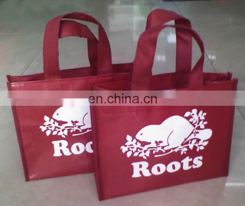 new Non-woven promotinal bag