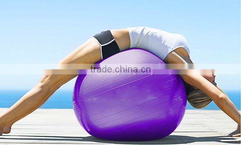 Yoga Ball Exercise Gymnastic Fitness Pilates Balance Exercise Gym Fit Yoga Core Ball Indoor Fitness Training Yoga Ball