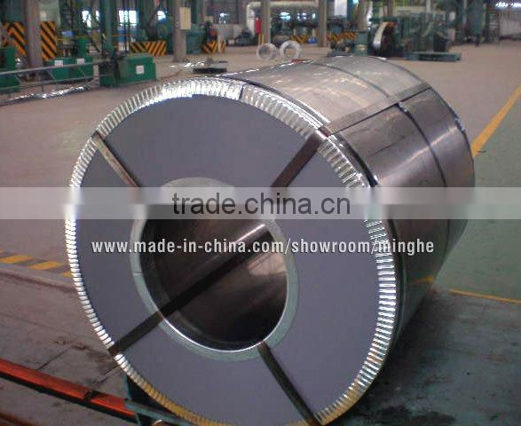 Prepainted galvanised steel