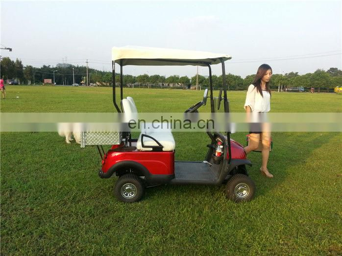 Curtis controller mini 2 seater golf cart