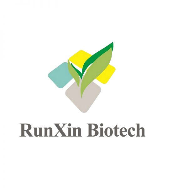 Shandong RunXin Pharma Co., Ltd.
