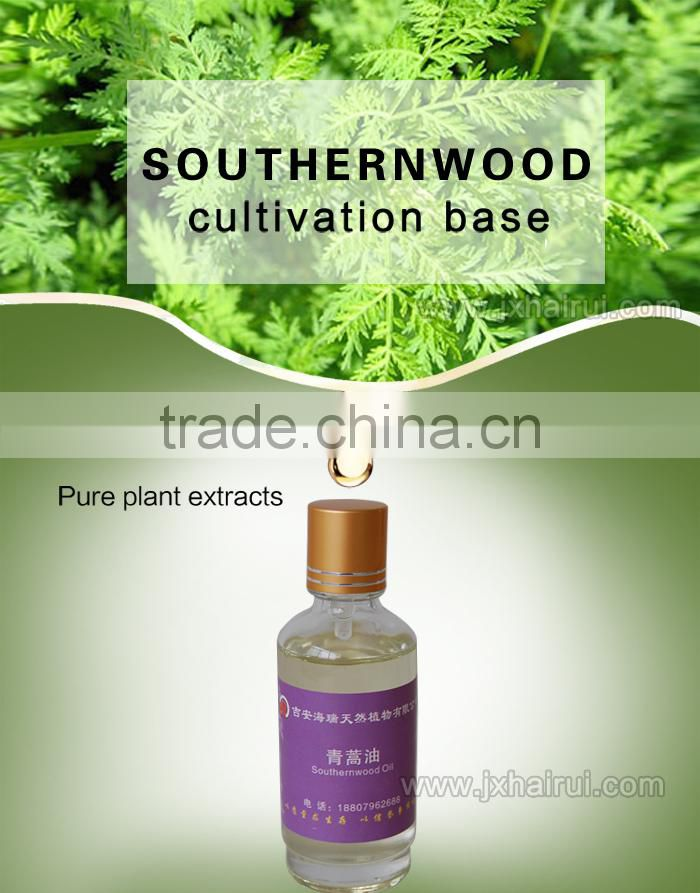 natural Artemisia essential oil (southernwood oil )