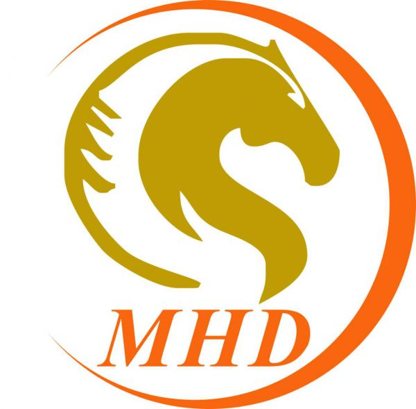 Ningbo Mhd Motor International Trade Co.,Ltd.