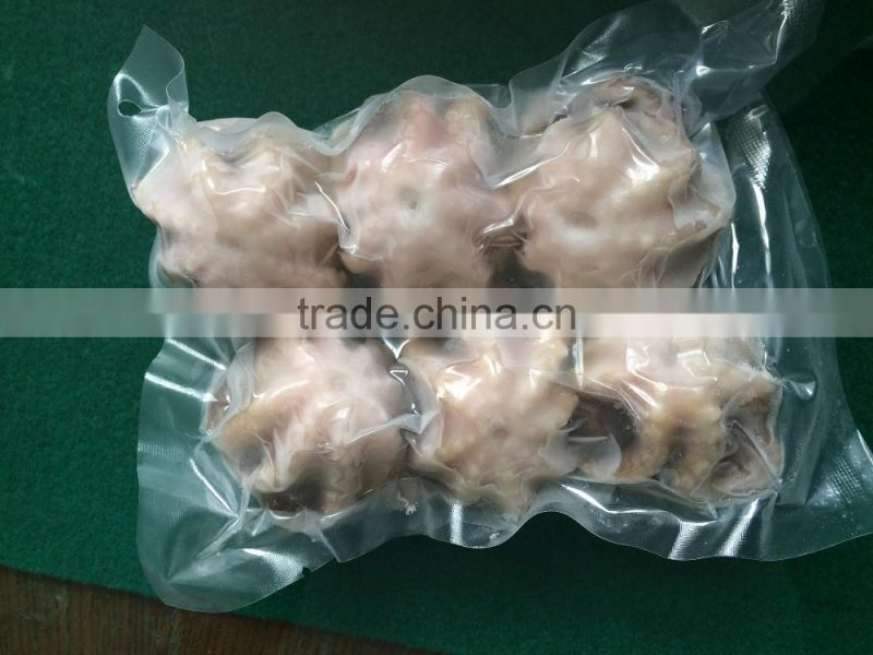 Frozen baby octopus vulgaris whole sale sea food from china