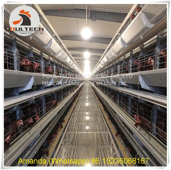 Uganda Poultry Farming - Battery Chicken Cage & Layer Cage & Chicken Coop & Hen Coop & Laying Hen Cage in Chicken House Image