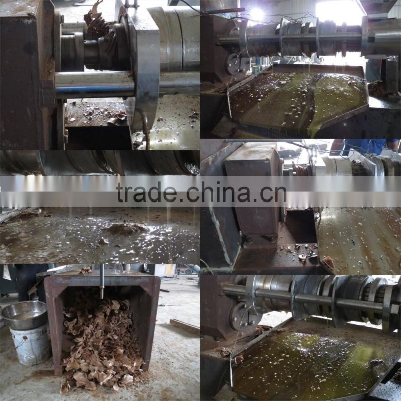 100KG/H cold press walnut oil extraction machine/oil extraction press/nut oil extraction