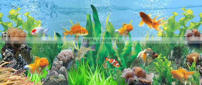 aquarium plants water treatment specially( AQD)