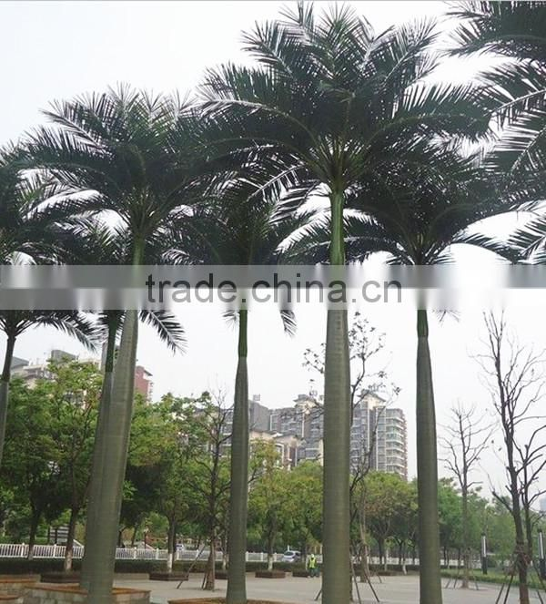 plastic artificial king coconut tree green large Coconut Tree