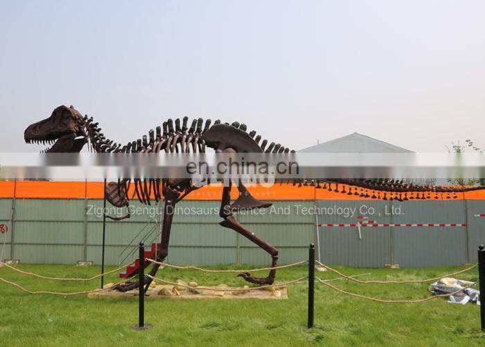 Playground Display High Emulation Dinosaur Skeleton Model