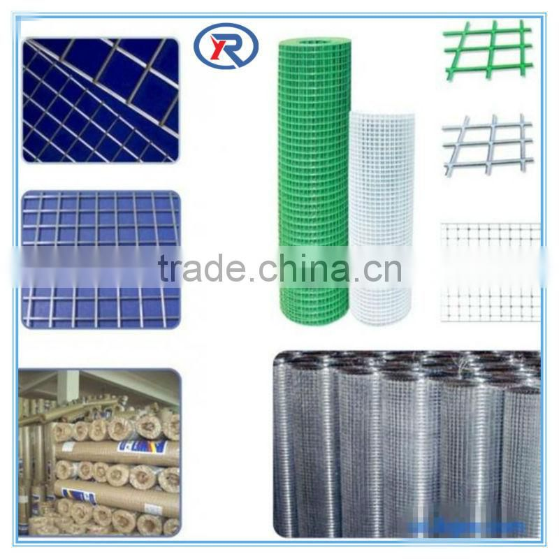 Electro-galvanized common building nails common wire iron nail
