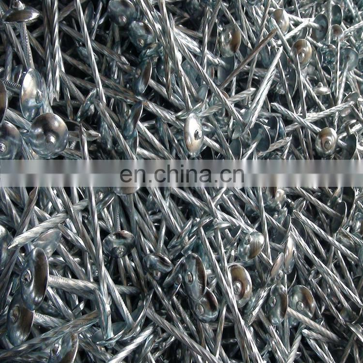 Hot sales! High Quality Umbreall Head Roofing Nails