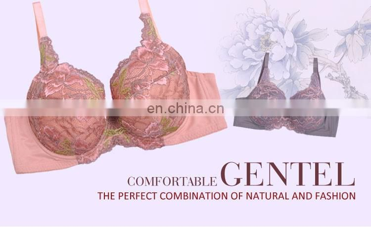 China Factory Direct Sale Underwired Push Up Plus Size Bra