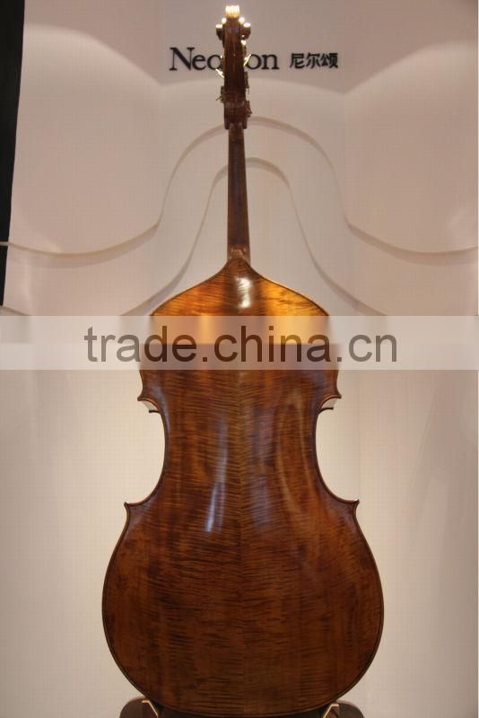 5 string advanced violin double bass