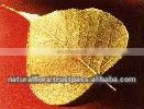 24kt Gold Plated Natural Leaf
