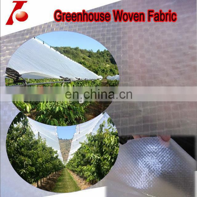 plant protective waterproof clear pe tarpaulin covers