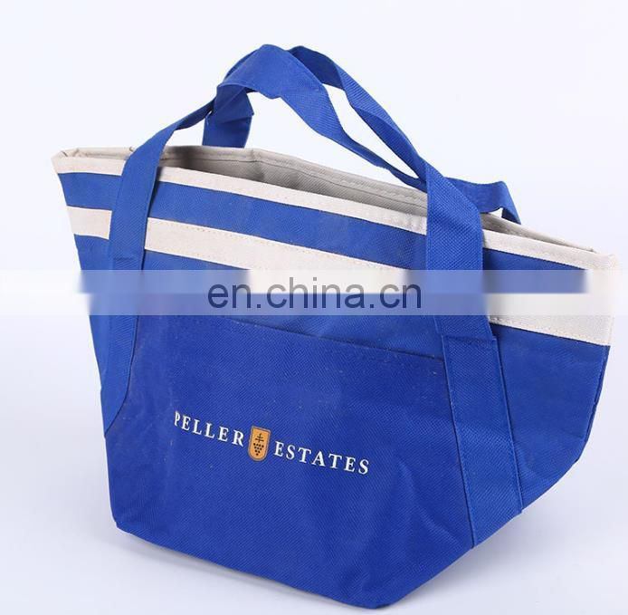 cooler bag with plastic food container