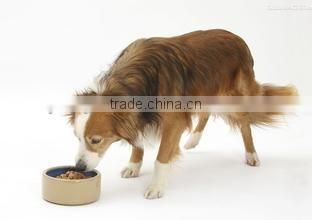 Industrial pet dog food treats making machine