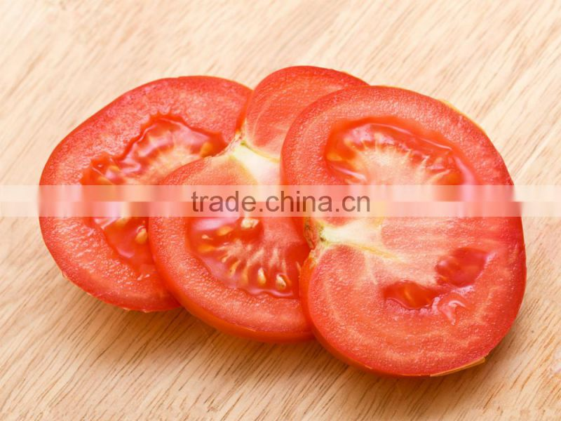 Tomato Multiple layer continuous type mesh belt dryer