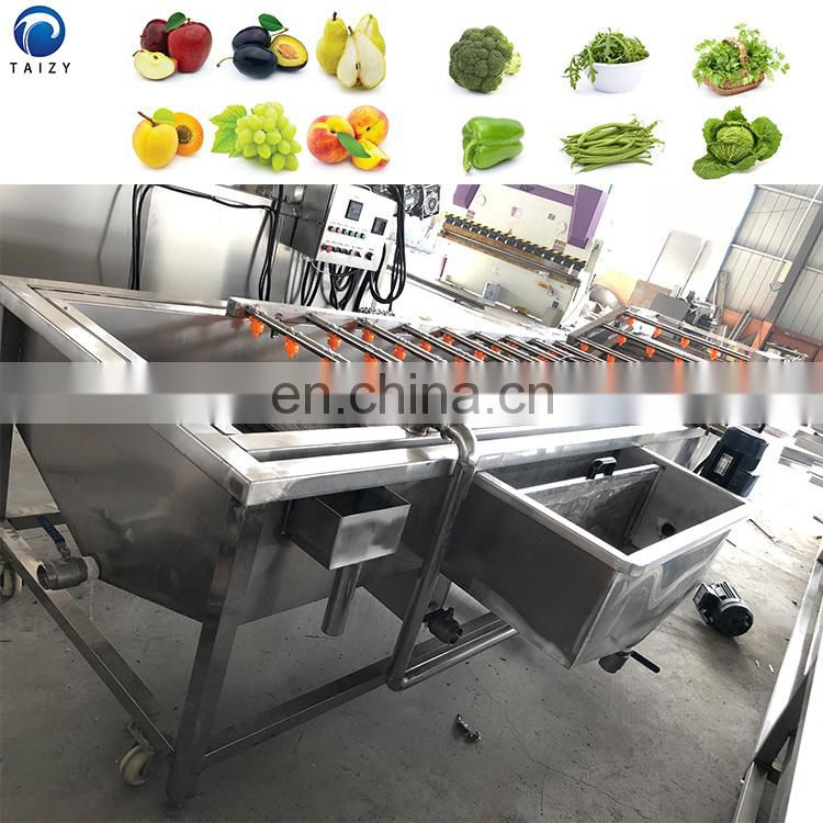 fruit cleaner persimmon papaya carrot washing machine restaurant vegetable washing machine